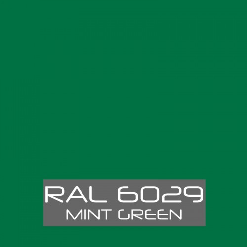 RAL 6029 Mint Green tinned Paint